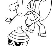 Coloriage Pokémon Lézard et son ami