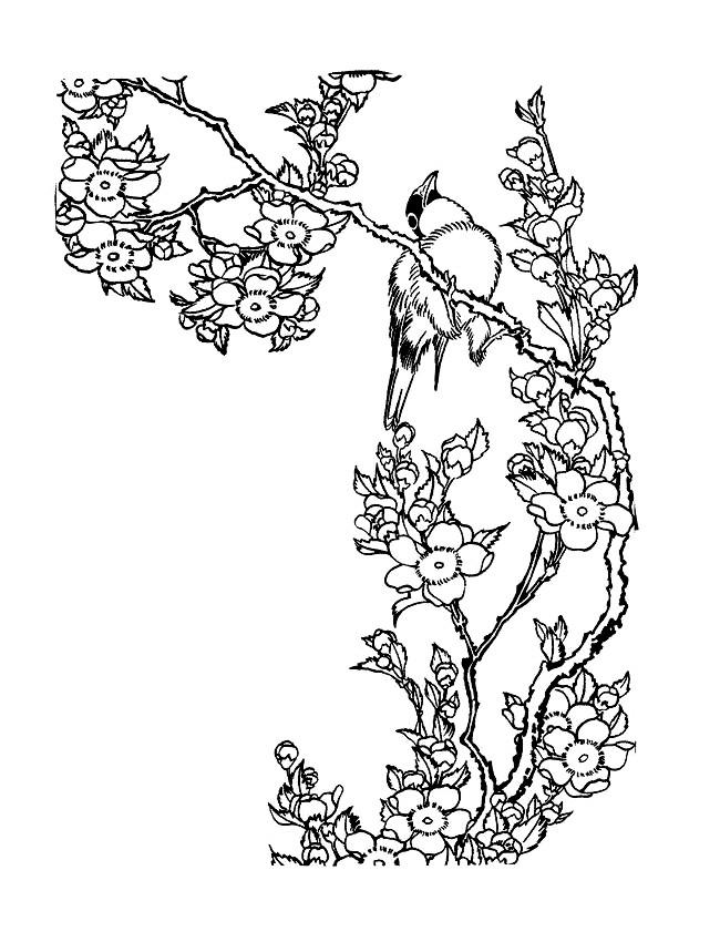 Coloriage et dessins gratuits Sarah Kay image en ligne à imprimer