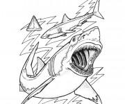 Coloriage Skylanders Requins