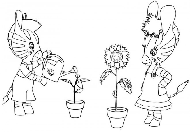 Coloriage les zouzous arrosent les fleurs dessin gratuit - Dessin zebre facile ...