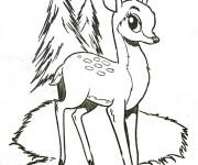 Coloriage Bambi entrain de grandir