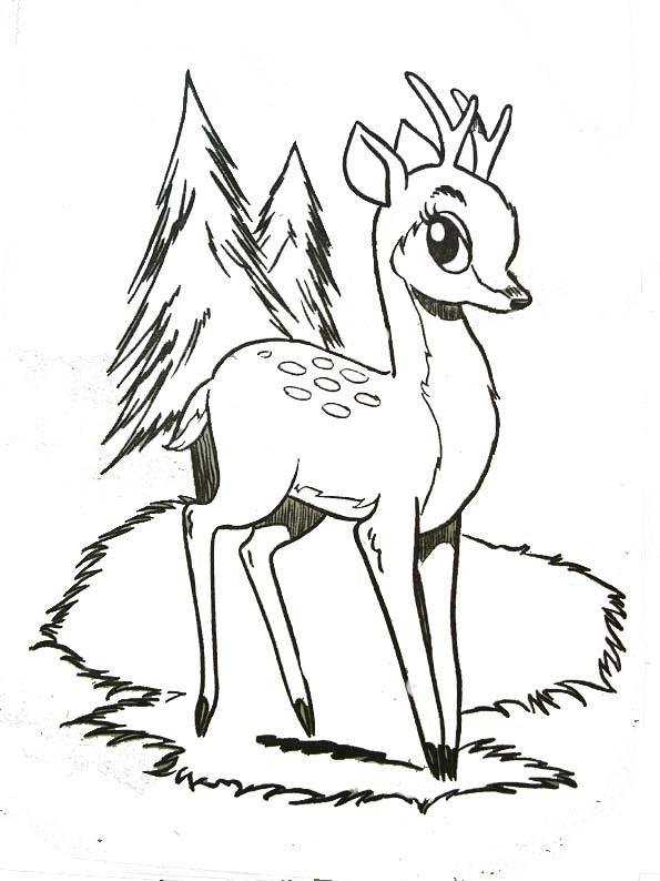 Coloriage et dessins gratuits Bambi entrain de grandir à imprimer