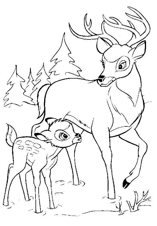 Coloriage et dessins gratuits Bambi et le grand prince marchent ensemble à imprimer