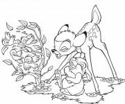 Coloriage Bambi et Panpan rient