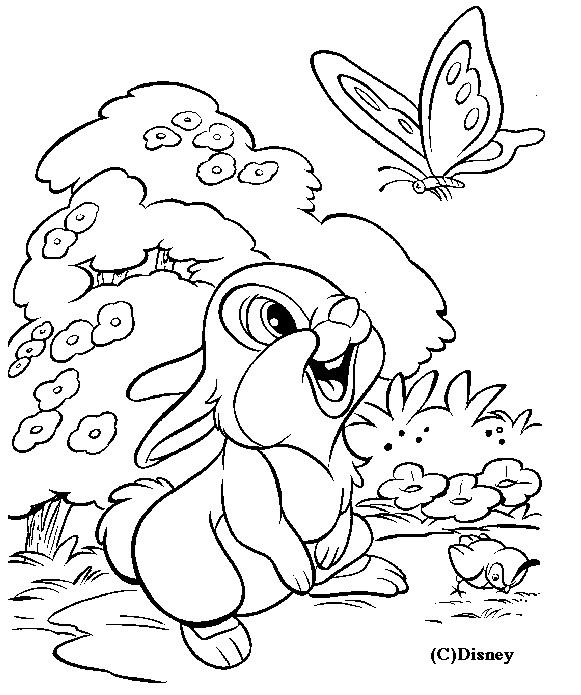 Coloriage et dessins gratuits Panpan découvre un papillon à imprimer