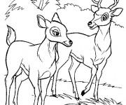 Coloriage Renno et la mère de Bambi