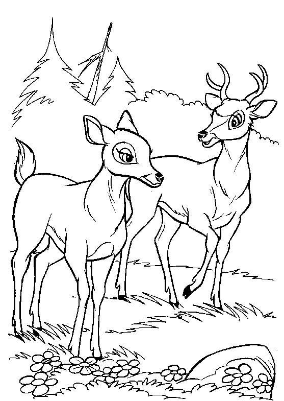 Coloriage et dessins gratuits Renno et la mère de Bambi à imprimer