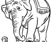 Coloriage et dessins gratuit Madame Jumbo est triste à imprimer