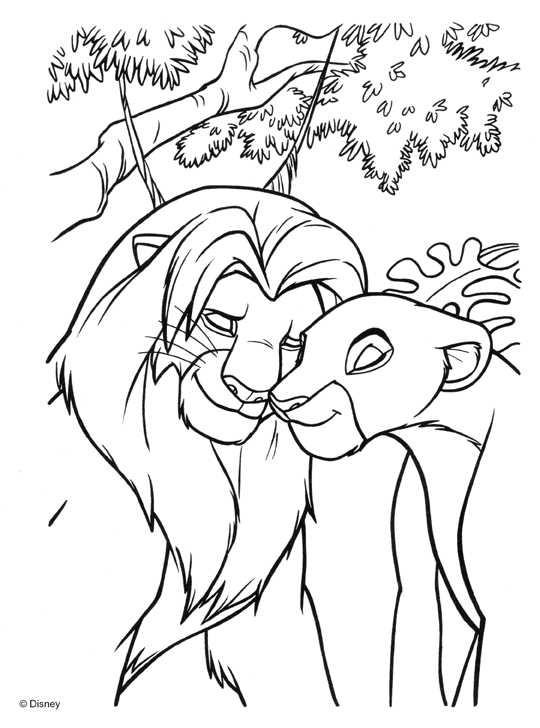 Coloriage Le Roi Lion Et Nala S Adorent Dessin Gratuit à