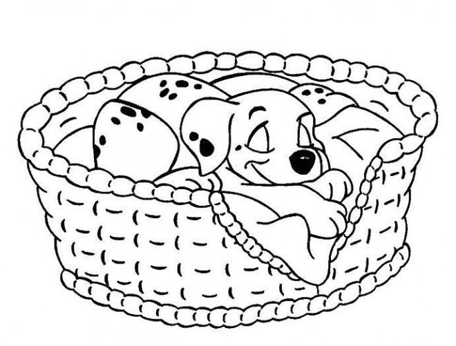 Coloriage et dessins gratuits Freckles endormie à imprimer