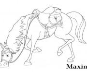Coloriage Maximus