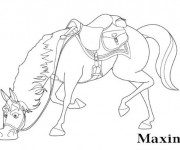 Coloriage Maximus Le cheval