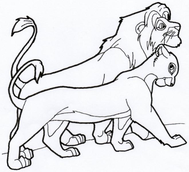 Coloriage et dessins gratuits Nala et le roi marchent ensemble à imprimer