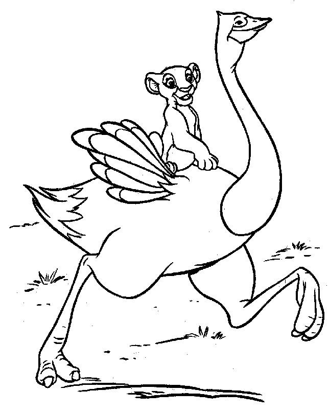 Coloriage et dessins gratuits Simba sur une autruche à imprimer