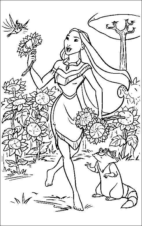 Coloriage et dessins gratuits Pocahontas Pocahantas cueille les fleurs de tourne sol avec Flit à imprimer