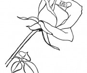 Coloriage et dessins gratuit Une Fleur pour nos chères Mères à imprimer