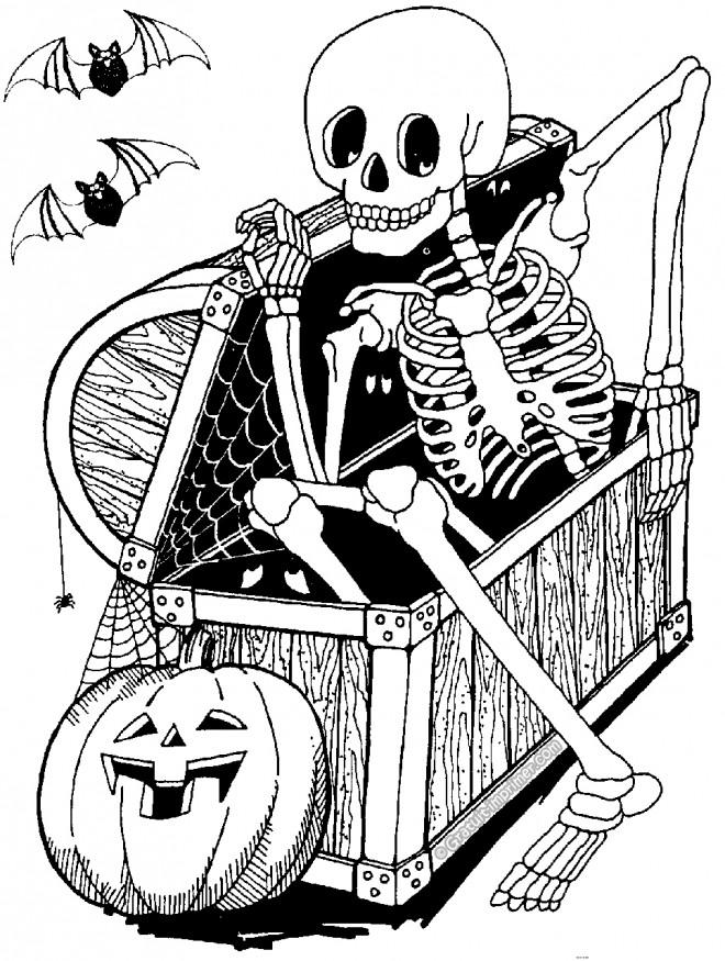 Coloriage halloween le coffre au squelette dessin gratuit - Dessin de aloine ...