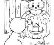 Coloriage Les chats et citrouille pendant l'Halloween