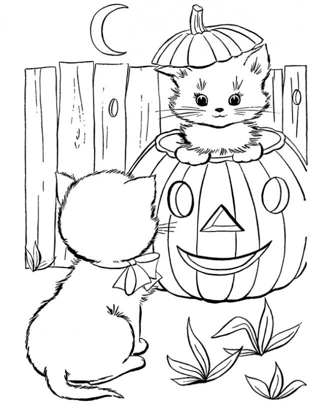 Coloriage et dessins gratuits Les chats et citrouille pendant l'Halloween à imprimer