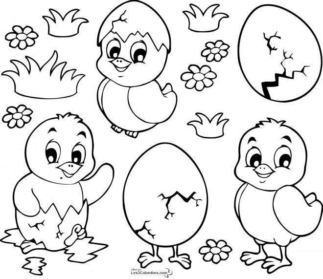 Coloriage et dessins gratuits Poussins de Pâques pour téléchargement à imprimer