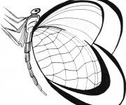 Coloriage St-Valentin Papillon stylisé