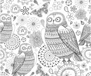 Coloriage Adulte Hibou en couleur