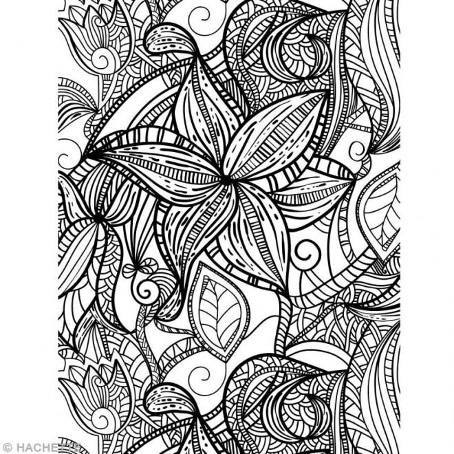Coloriage et dessins gratuits Fleurs Stylisé Adulte Anti-stress à imprimer