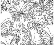 Coloriage et dessins gratuit Adulte Papillons à imprimer