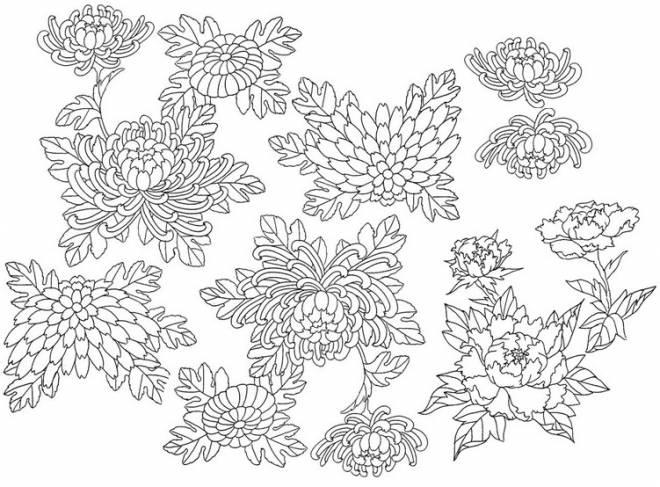 Coloriage et dessins gratuits Adulte fait de fleurs à imprimer