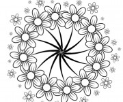 Coloriage et dessins gratuit Adulte fleurs à Cinq pétales à imprimer