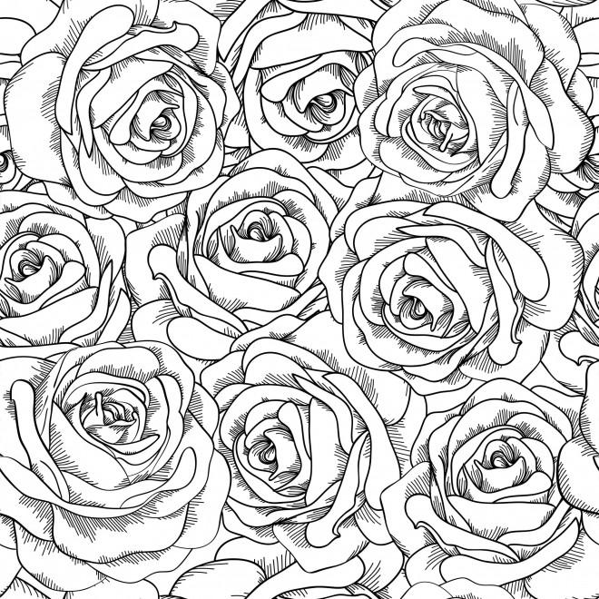 Coloriage et dessins gratuits Adulte Fleurs et leurs Pétales à imprimer