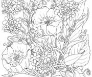 Coloriage et dessins gratuit Fleurs Adulte différentes à imprimer