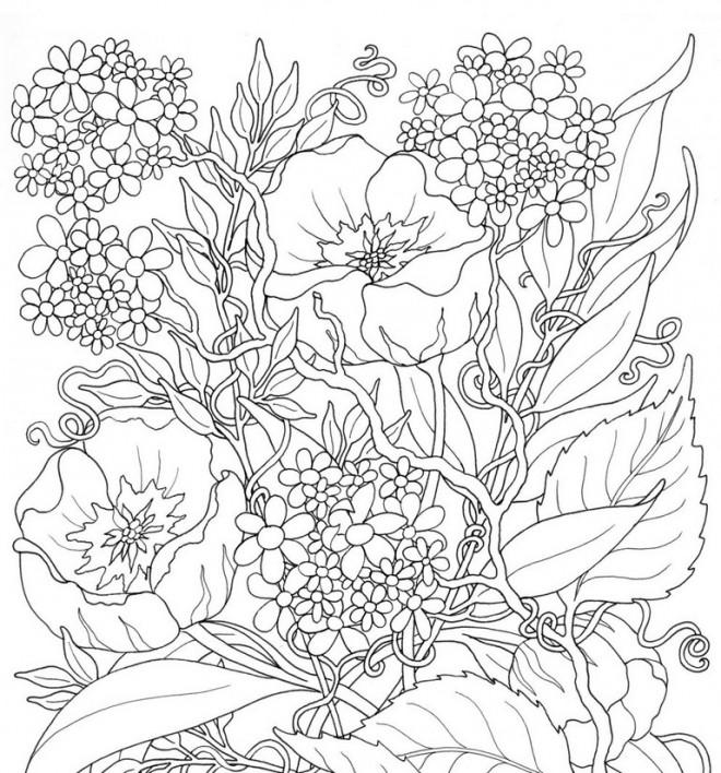 Coloriage et dessins gratuits Fleurs Adulte différentes à imprimer