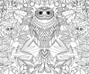 Coloriage Adulte Hibou