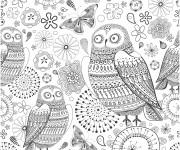 Coloriage et dessins gratuit Adulte Hibou en couleur à imprimer