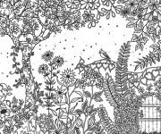 Coloriage et dessins gratuit Adulte Jardin 6 à imprimer