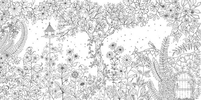 Coloriage Adulte Jardin Fleuri Dessin Gratuit A Imprimer