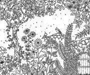 Coloriage Adulte Jardin Printemps