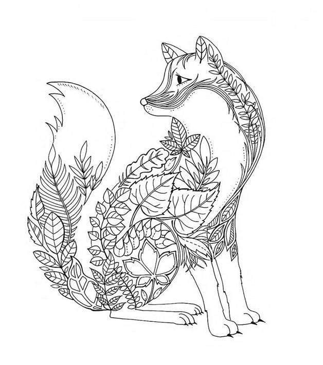 Coloriage adulte jardin renard dessin gratuit imprimer - Coloriage renard a imprimer gratuit ...