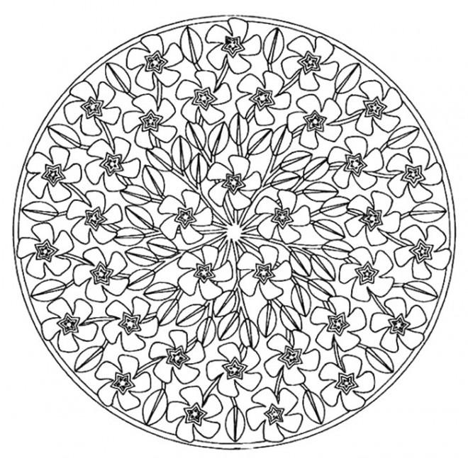 Coloriage Adulte Rose Mandala Dessin Gratuit à Imprimer