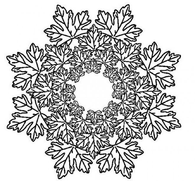 Coloriage et dessins gratuits Mandala Feuilles d'arbre Adulte à imprimer