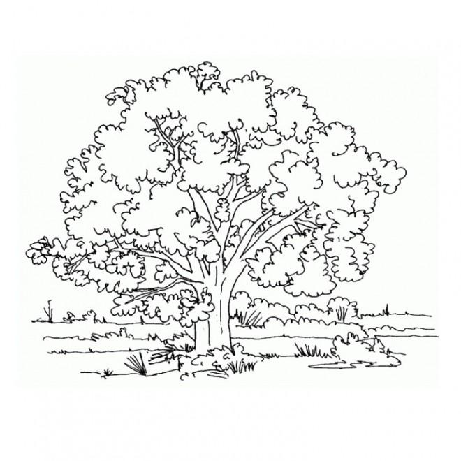 Coloriage Adulte Paysage 28 dessin gratuit à imprimer