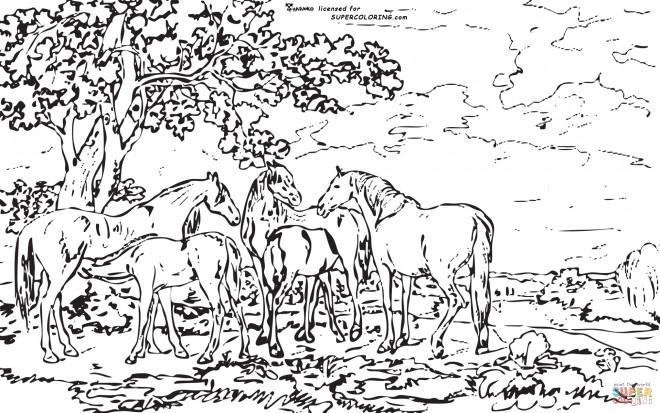 Coloriage adulte paysage la nature dessin gratuit imprimer - Dessin a colorier paysage ...