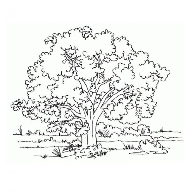 Coloriage et dessins gratuits Paysage Compagne à imprimer