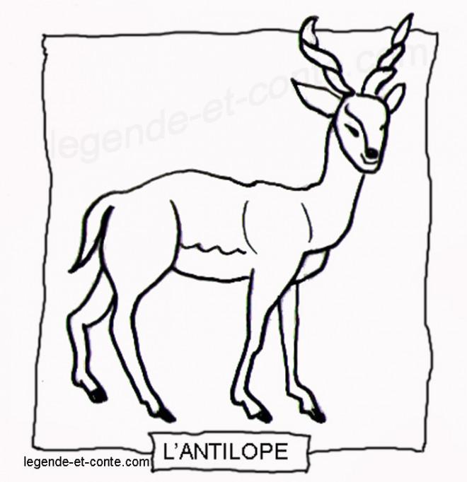Coloriage et dessins gratuits Animal Afrique au crayon à imprimer
