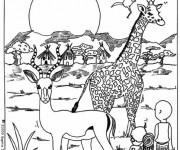 Coloriage et dessins gratuit Animaux Afrique à imprimer
