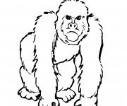 Coloriage et dessins gratuit Gorille en Afrique à imprimer