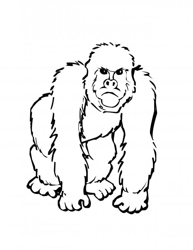 Coloriage et dessins gratuits Gorille en Afrique à imprimer