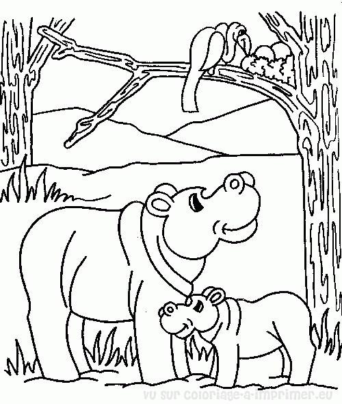 Coloriage et dessins gratuits Les animaux de la forêt africaine à imprimer