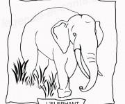 Coloriage Un Éléphant à découper